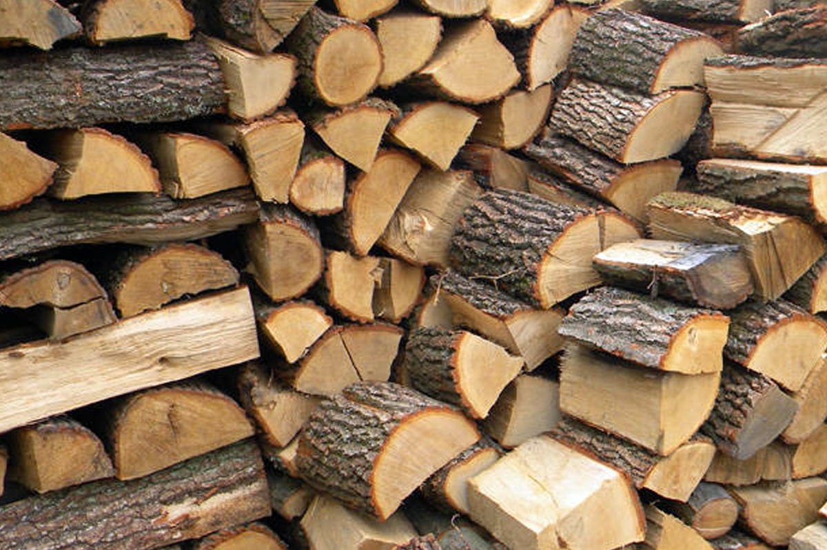 drewno-opalowe-buk-dobredokominka-drewno-gniezno